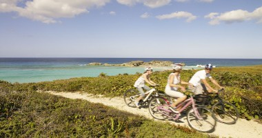 44082811-H1-Island_cycling_family