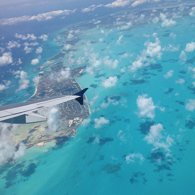 The Best Places To Dive In Turks And Caicos My Turks And