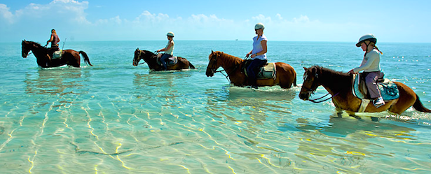 picture of people on horseback in the caribbean of turks and caicos