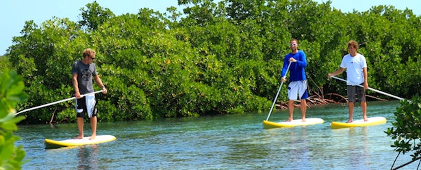 Things to Do in Turks and Caicos Paddleboarding Mangroves
